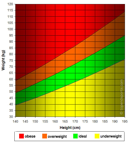 Average American Woman's Weight and Height LIVESTRONG. COM